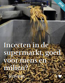 141031_Volkskrant_website