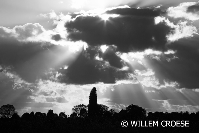 cWillem Croese - www.willemcroese.nl
